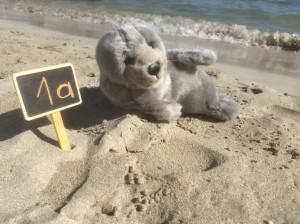 Simon am Strand 2